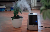 7 Best Air Purifiers in India for clean Air